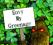 greenenvy