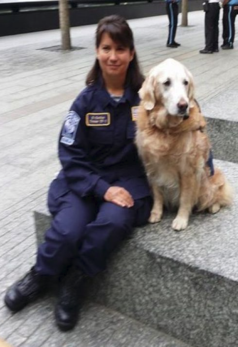 Heroic 9/11 Ground Zero Rescue Dog Returns To Site For 1st Time Since Attacks