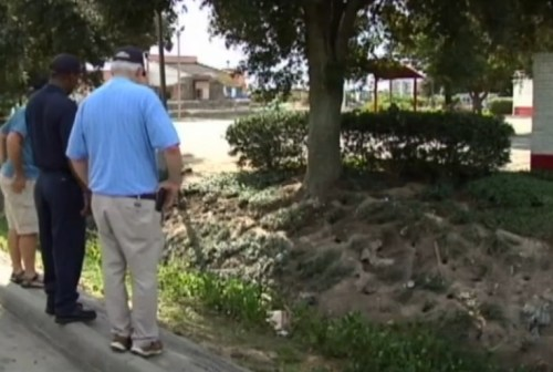 Rat Colony Overtakes Baton Rouge Ditch